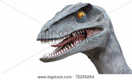 A Raptor dinosaur head over a white background with mouth slightly opened. poster