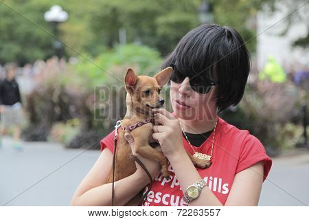 PACK volunteer with Chihuahua