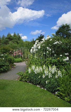 English Cottage Garden In Devon