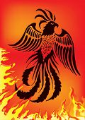 Vector illustration of phoenix on red background with flame poster
