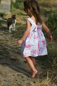 girl in a beautiful summer dress barefoot running after the cat poster
