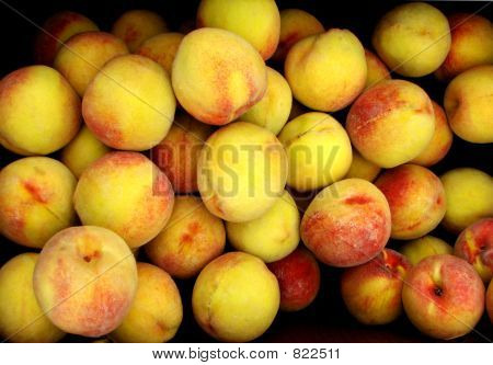 Peaches 308