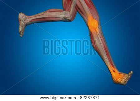 Conceptual 3D human man anatomy or health design, joint or articular pain, ache or injury on blue background, for medical, fitness, medicine, bone, care, hurt, osteoporosis, painful, arthritis or body poster