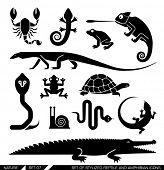 Set of various animal icons: scorpions, snakes, frogs, lizards, snails, crocodiles, turtles, cobra, chameleon, gecko  . Vector illustration. poster
