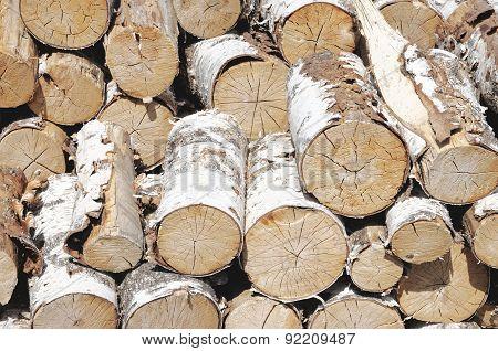 Heap of birch log