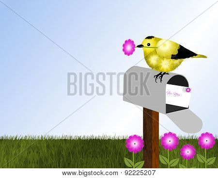 Goldfinch, Flowers and Mailbox