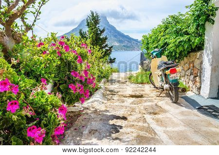 Colorful flowers and scooter parked on road Greece