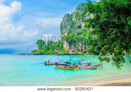 Long tail boat and high palm trees, Krabi Thailand