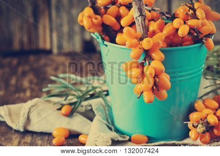 Organic ripe sea buckthorn in blue metal bucket on wooden background. Bio healthy fruits. Selective focus. Tinted image of a retro style