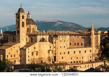 Buildings in Urbino during the golden hour