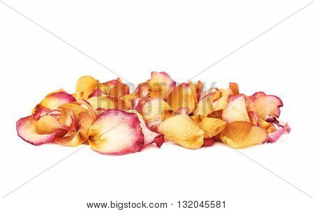 Pile of pink rose dried petals as a romantic composition over white isolated background