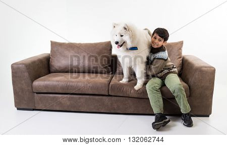 Dog in house