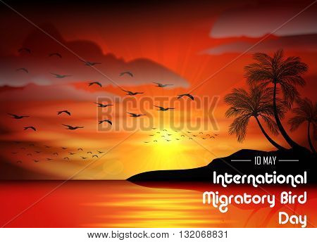 Vector illustration of Birds migratory day of silhouettes bird on sunset background