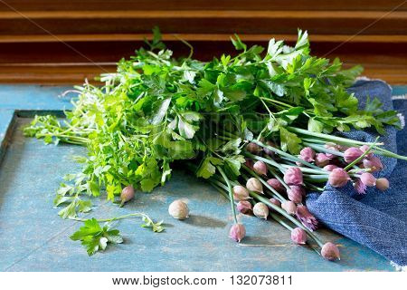 Spring Vitamin Set Of Different Herbs (parsley, Onion, Arugula, Watercress Salad) On A Rustic Wooden