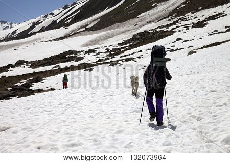Two hikers and dog in snowy mountains at spring. Turkey Kachkar Mountains (highest part of Pontic Mountains).