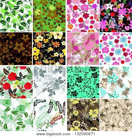 Set vector seamless pattern flowers and floral pattern illustration
