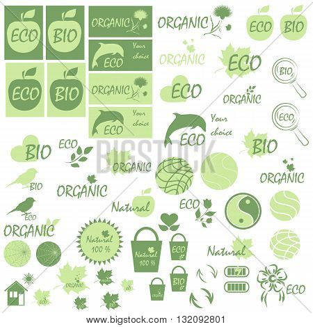 Set of icons and logo on the theme of natural products and environmental