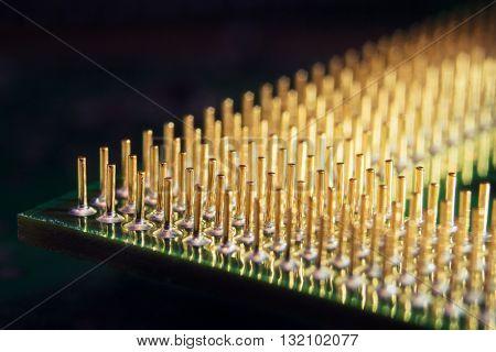 Computer processor's golden pins