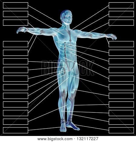 3D illustration of a concept or conceptual male or human anatomy, a man with muscles and textbox isolated on black background
