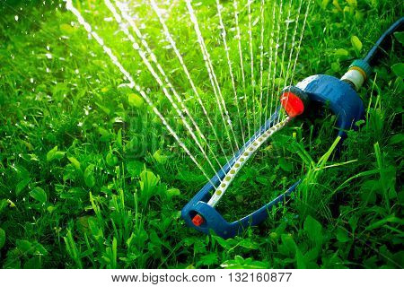 Lawn sprinkler spaying water over green grass. Irrigation system poster