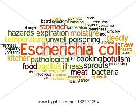 Escherichia Coli, Word Cloud Concept 3