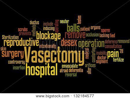 Vasectomy, Word Cloud Concept 5