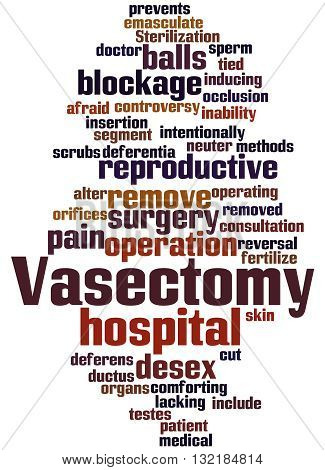 Vasectomy, Word Cloud Concept 9