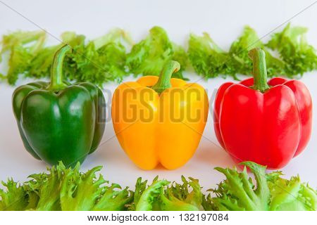 Fresh ripe vegetables three sweet Green Yellow Red Peppers isolated and leaves of frillis on white background. Bell peppers.