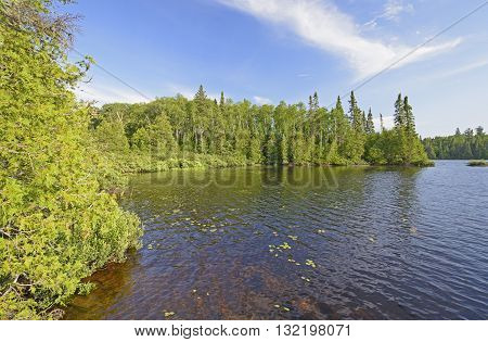 Quiet Cove in Horseshoe Lake in the Boundary Waters in Minnesota