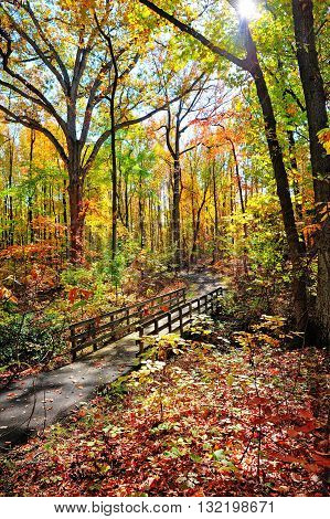 An old wooden walking bridge over a stream in Maryland during Autumn