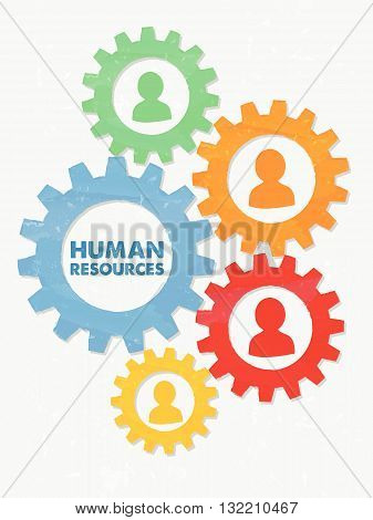human resources words and colored person signs in grunge flat design gear wheels, business concept, vector