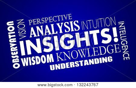 Insights Knowledge Intelligence Analysis Word Collage 3d Illustration