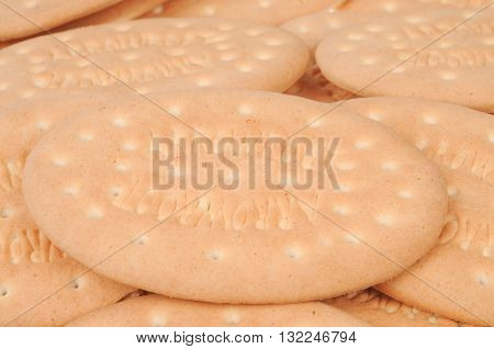 A close up of Milk Arrowroot Biscuits