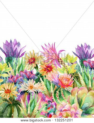 Watercolor blooming cactus background. Exotic cacti with flowers. Succulent plants and cactus. Hand painted watercolor illustration for garden design.