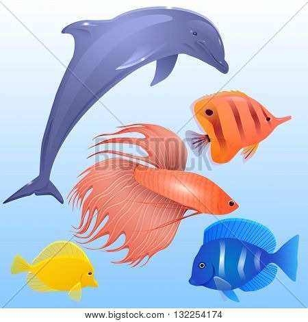 Vector set of tropical fish dolphins and fish-rooster for your creativity