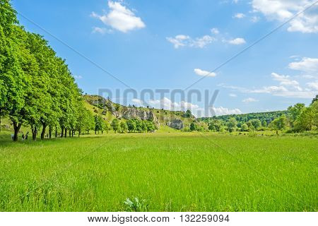 Valley Eselsburger Tal - Green Meadow