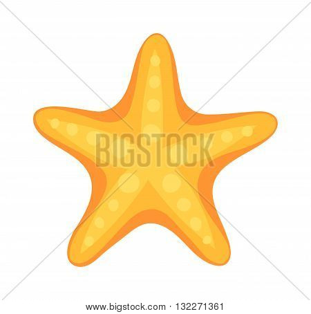 Sea star caribbean starfish on a white background. Coral aquatic sea star and vector cartoon sea star fish. Starfish tropical nature animal sea star and life mollusk underwater sea star.