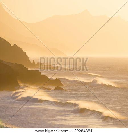 La Pared surfers beach in sunset, Fuerteventura, Canary Islands, Spain