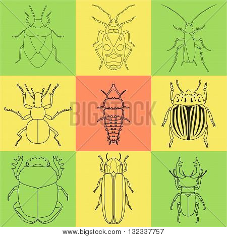 insect icons set. dor-beetle and firefly, firebug and ant, fly and cockroach, colorado beetle and mosquito, stink bug and trilobite. vector illustration