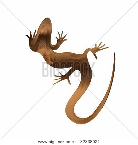 Beautiful sand lizard, lizard silhouette and salamander silhouette, gecko. Vector illustration
