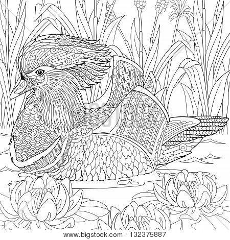 Zentangle stylized cartoon mandarin duck swimming among water lilies flowers. Hand drawn sketch for adult antistress coloring page T-shirt emblem logo tattoo with doodle zentangle design elements.