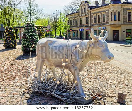 White Cow In Ventspils In Latvia