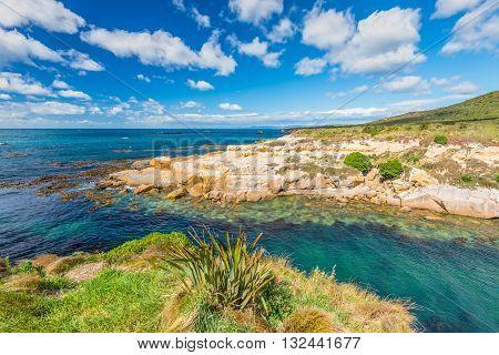 New Zealand colorful coastline landscape with fur seals and birds at Otago Region Southern island New Zealand - circular polarizing filter