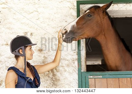 young horsewoman plays with its horses in the stable