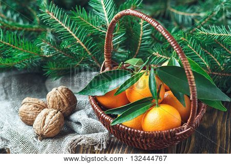 Christmas New Year composition with tangerines, nuts, and fir branches in rustic style on old wooden background, selective focus