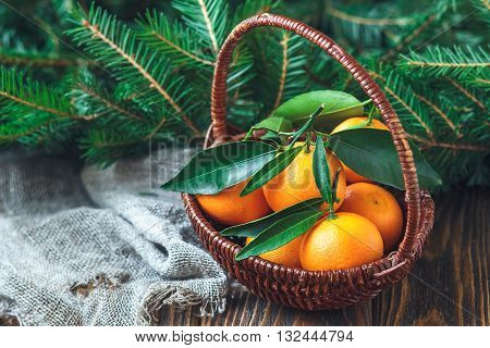 Composition with tangerines and fir branches in rustic style on old wooden background, selective focus