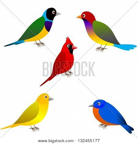 Clipart picture of five bird cartoon character .