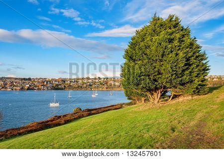 View of Kinsale town and harbour. Cork County Munster Ireland
