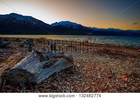 beautiful landscape dusky sky and cutting tree stump and wankak lake important traveling destination in south island new zealand