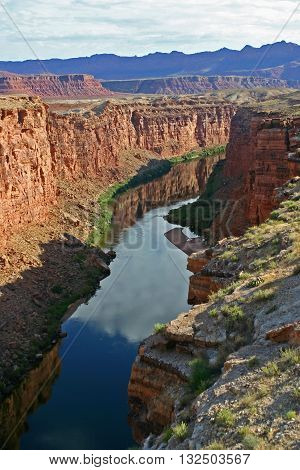 the Colorado River passes through Marble Canyon in northern Arizona
